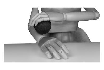 Bild Faszienrollen für das Faszientraining von Hand und Arm