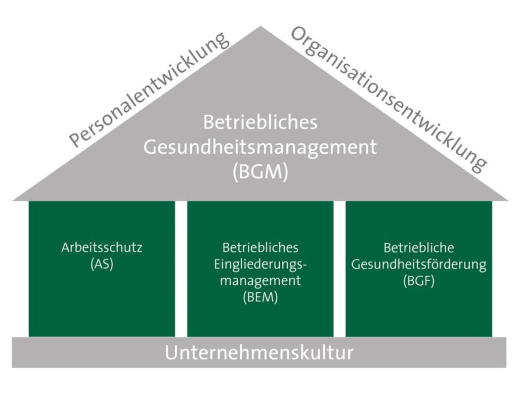Die Grafik der salvea bgm stellt die verschiedenen Säulen des betrieblichen Gesundheitsmanagements im Betrieb dar