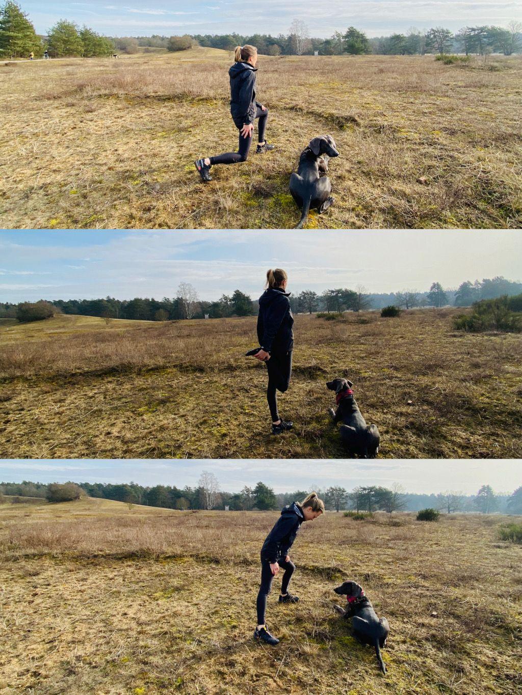 Das Foto zeigt eine Frau mit Hund bei Dehnübungen auf einer schönen Wiese als Sinnbild für therapeutisches Outdoor Training