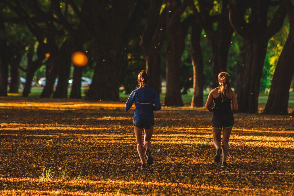 Das Foto zeigt zwei Frauen beim Waldlauf als Beispiel für therapeutisches Outdoor Training