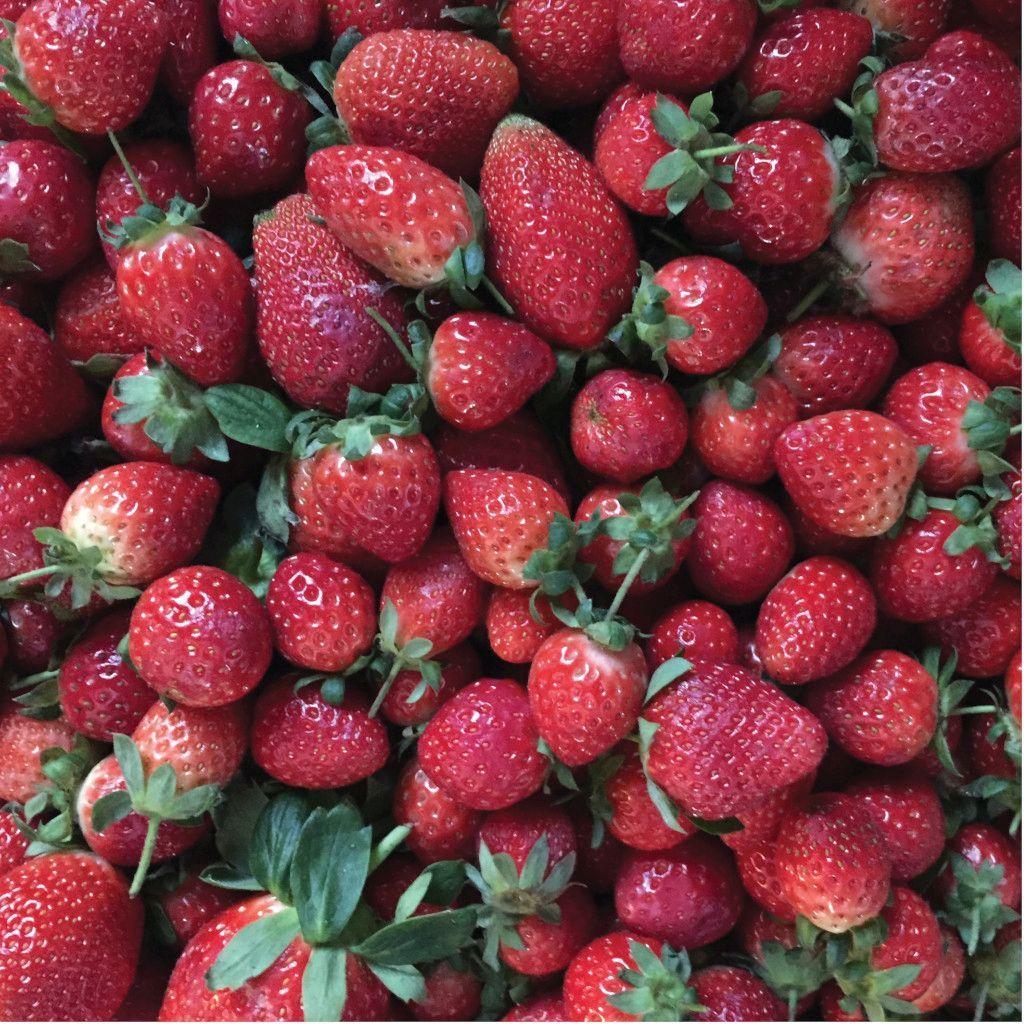Das Foto zeigt Erdbeeren mit unterschiedlichem Reifegrad als Beispiel dafür, dass Nachhaltigkeit von Lebensmitteln bedeutet, nicht immer gleich alles zu entsorgen was nicht mehr perfekt aussieht